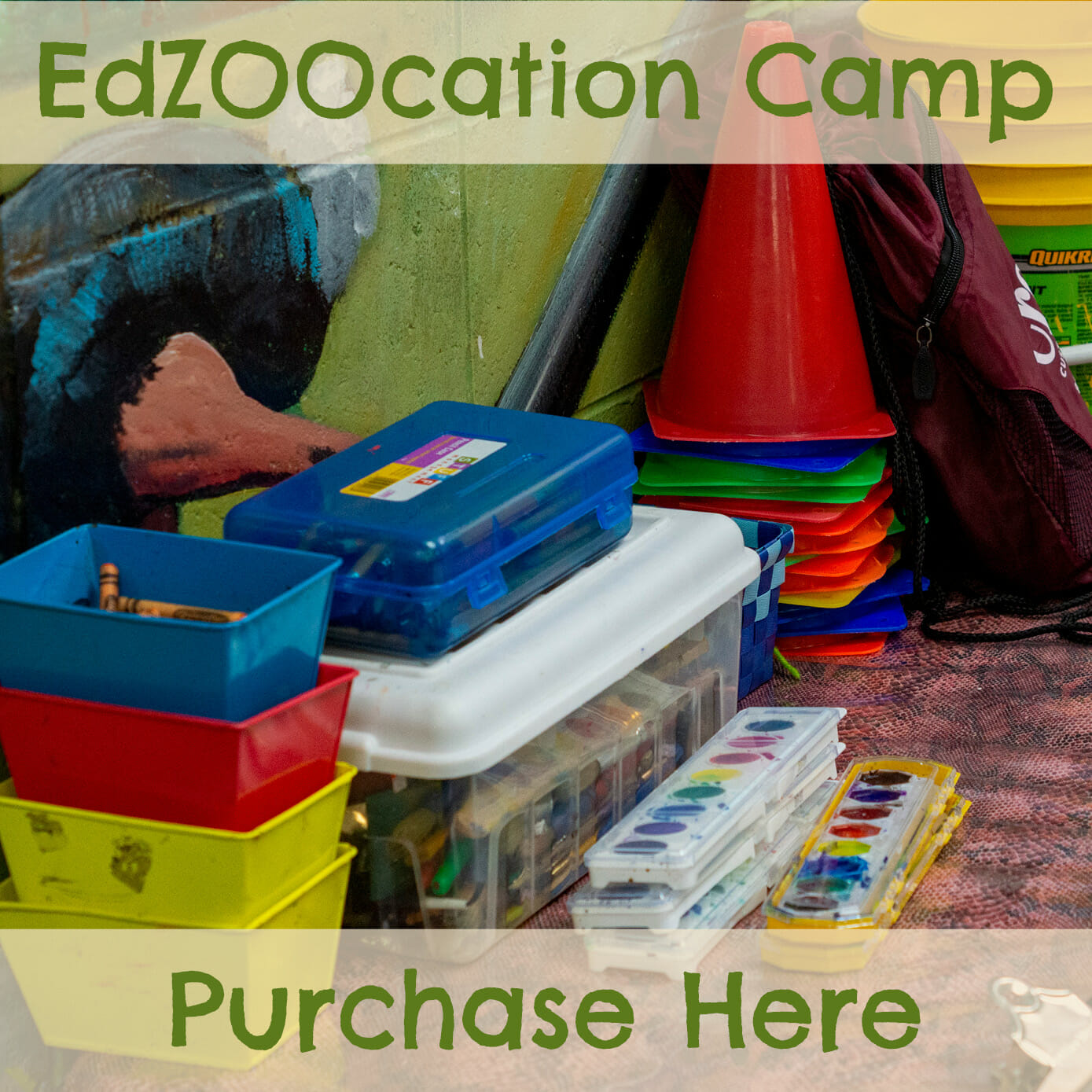 purchase an educational zoo camp